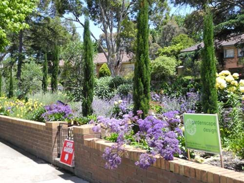 Best Landscape design Melbourne | Sandra McMahon Gardenscape Design | A carefully co-ordinated colour scheme creates a rhythm in this garden and helps to unify the exuberant, year-round plantings.