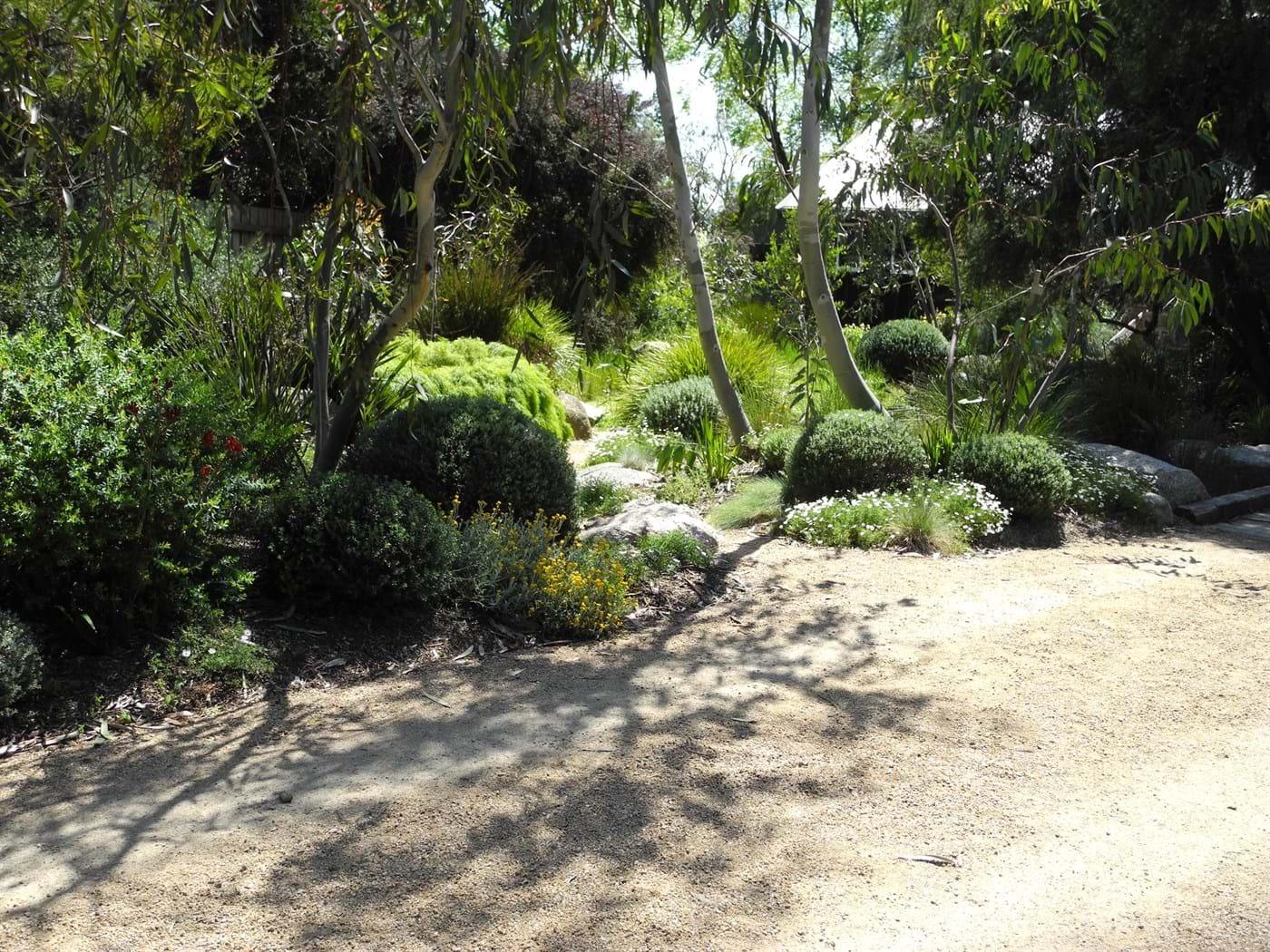 Landscape Design Melbourne Sandra McMahon Gardenscape Design